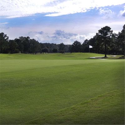 Gallery_golf