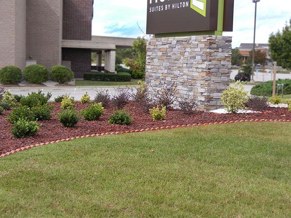 Hotel grass