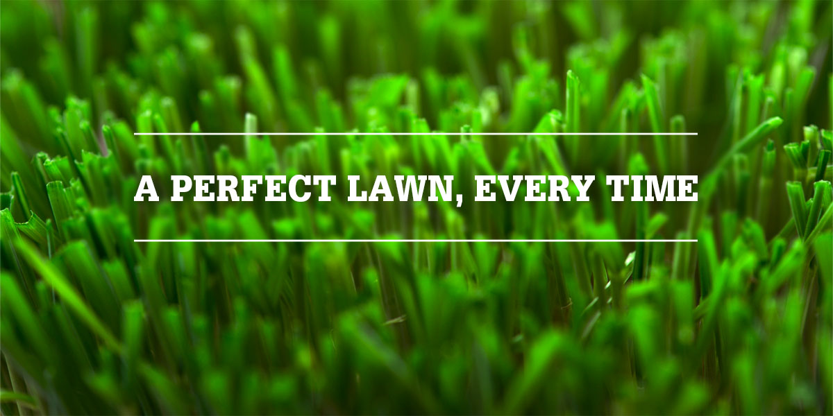 Perfect lawn, every time